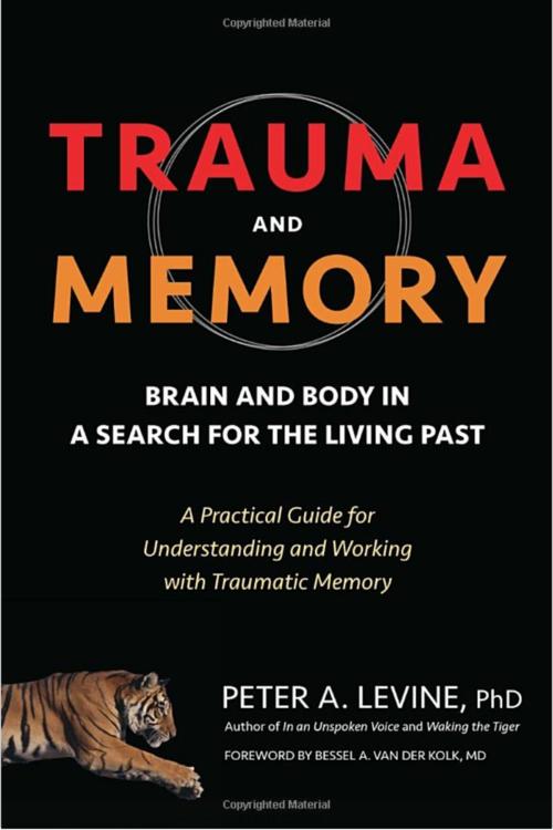 Trauma & Memory